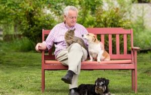 Senior man with pets